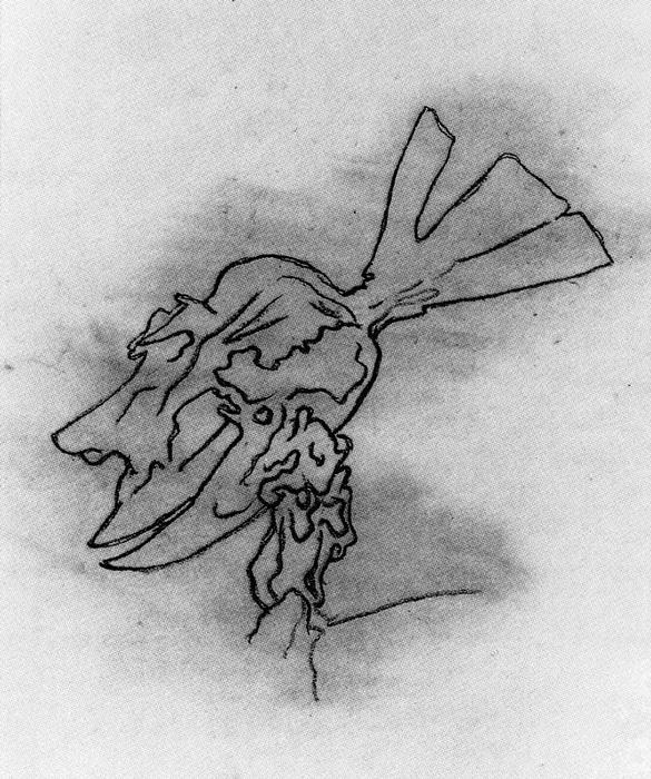 Cat.272 Cabeza de Homo Rodans